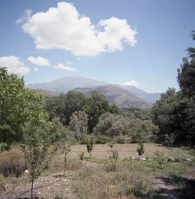 Gerakari, Crete, Greece , Hadas Tapouchi, photo: Hadas Tapouchi